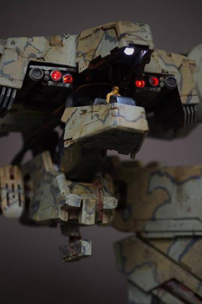 rex_25.jpg