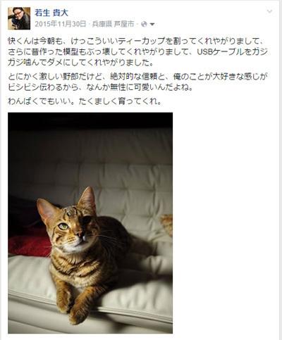 kai_hakai.jpg
